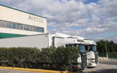 España triplica la exportación de carne de ave en la última década