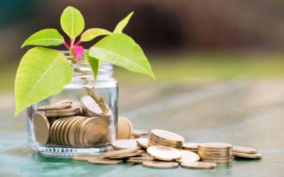 3.500 millones para impulsar la economía verde y digital en la industria cárnica